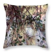 Abstract Birch Throw Pillow