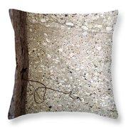 Abstract Concrete 12 Throw Pillow