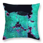 Abstract Corrosive Metal Background With Turquoise Paint Cracks Throw Pillow