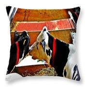 Abstract Cows Throw Pillow