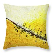 Abstract Crack Line On The Orange Rock Throw Pillow