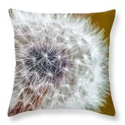 Abstract Dandy Lion On - Orange Throw Pillow