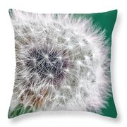 Abstract Dandy Lion - Teal Throw Pillow