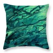 Abstract Design 18 Throw Pillow