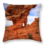 Abstract Erosion Throw Pillow