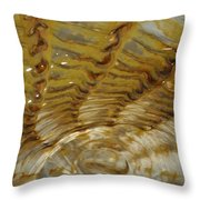 Abstract Glass 2 Throw Pillow