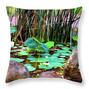 Abstract Nature 4043 Throw Pillow