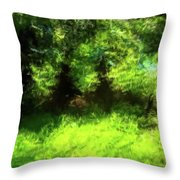 Abstract Nature 834 Throw Pillow