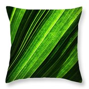 Abstract Of Green Leaf Of Exotic Palm Tree Throw Pillow