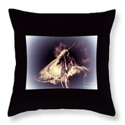 Abstract Of Skipper Butterfly Throw Pillow