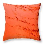 Abstract Orange Throw Pillow