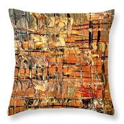 Abstract Part By Rafi Talby Throw Pillow