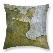 Abstract Pattern On The Wall Throw Pillow