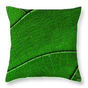 Abstract Rain Forest Throw Pillow