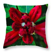 Abstract Rhoddy Bloom Throw Pillow