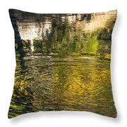Abstract River Reflection Throw Pillow