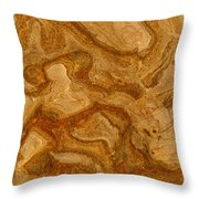Abstract Rock With Swirling Lines Throw Pillow