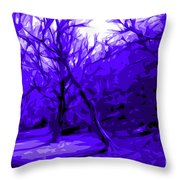 Abstract Sanctuary Throw Pillow