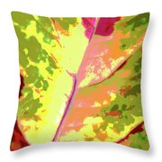 Abstract Summer's End Throw Pillow