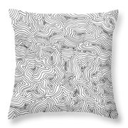 Abstract Swirl Design In Black And White Throw Pillow