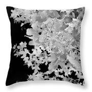 Abstract Tree Landscape Dark Botanical Art Black Noir Throw Pillow