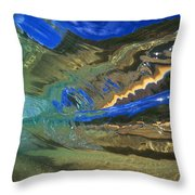 Abstract Underwater View Throw Pillow