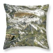 Abstract Water Art Vi Throw Pillow