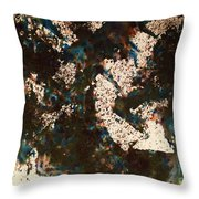 Abstract.3740 Throw Pillow