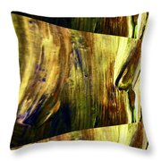Abstracted Lines Throw Pillow