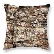 Abstraction 2339 Throw Pillow