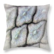 Abstractions From Nature - Pine Cone Throw Pillow