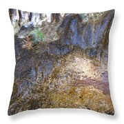 Abstraction In Color And Texture From Wet Rock Throw Pillow
