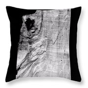 Abstraction Of Nature No. 2 Throw Pillow
