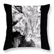 Abstraction Of Nature No. 4 Throw Pillow