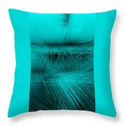 Ac-3-16 Throw Pillow
