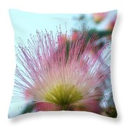 Acacia Bloom Throw Pillow