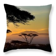 Acacia Land Throw Pillow