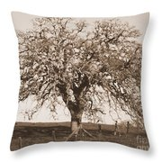 Acacia Tree In Sepia Throw Pillow