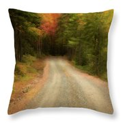Acadia Backroads Throw Pillow