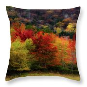 Acadia Colors Throw Pillow