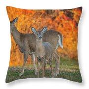 Acadia Deer Throw Pillow