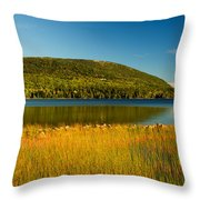 Acadia, National Park Shoreline And Marsh Maine Throw Pillow