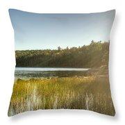 Acadia National Park Shoreline In Evening Sun Throw Pillow