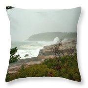Acadian Storm Throw Pillow