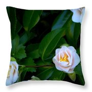Accents Of Love In Color Throw Pillow