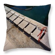 Access Throw Pillow