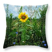 Accidental Beauty Throw Pillow