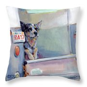 Acd Delivery Boy Throw Pillow
