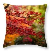 Acer Colors Throw Pillow