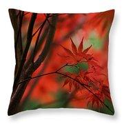 Acer Fanfare Throw Pillow